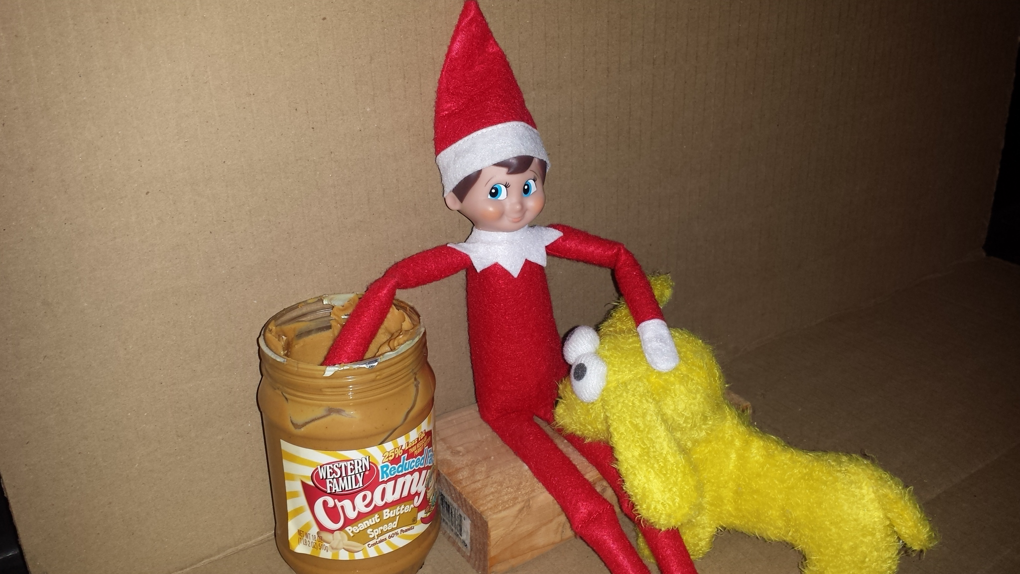 Lets See Your Quot Bad Elf On A Shelf Quot