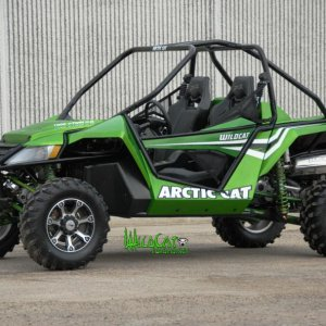2012 wildcat green side